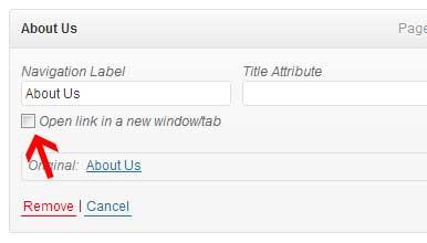 Wordpress_Appearance_Menu_Check_new_window